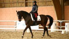 Cloé Mislin, la passion du cheval est « son moteur »