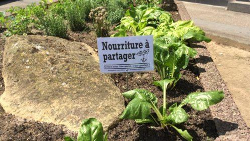 Les Incroyables Comestibles font germer une autre société