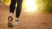 Santé : plus de légumes secs et davantage d'activité physique
