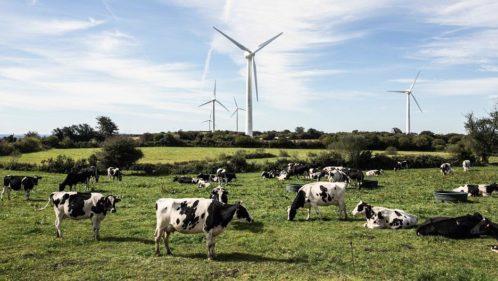 Enercoop : une coopérative au service de la transition énergétique citoyenne