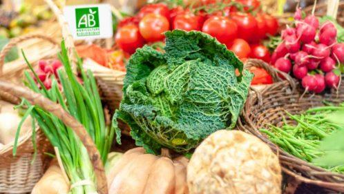 Les labels bio protègent-ils vraiment la santé et l'environnement ?