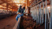 wwoofing ferme chèvres