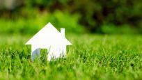 Petite maison pelouse