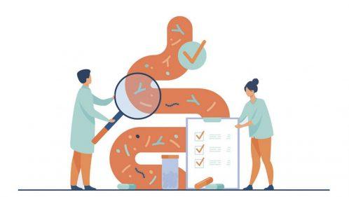 illustration microbiote intestinal
